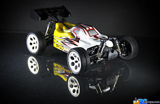 1/18 Scale Buggy