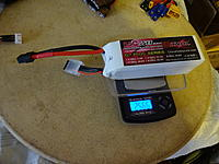 Name: DSC04519.JPG