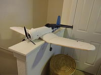 Name: DSC04513.JPG