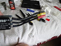 Name: DSC01101.jpg