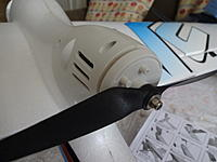 Name: DSC01752.jpg