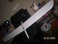 Name: Boar wing.jpg Views: 233 Size: 124.9 KB Description: