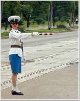 Name: Traffic Police 3.jpg Views: 129 Size: 53.4 KB Description: