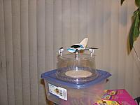 Name: Quadcopter 003.jpg Views: 128 Size: 155.6 KB Description: