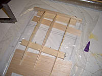 Name: CIMG8933.jpg