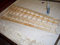 Name: CIMG8969.jpg