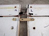 Name: Wngmtbottm.jpg