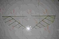 """Name: DSC_4550.jpg Views: 224 Size: 106.0 KB Description: wings 50"""" span"""