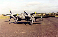 Name: mosquito_rufe_1.jpg