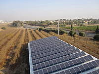 Name: IMG_3631.jpg