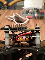 Name: IMG_5426.jpg