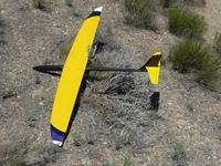 Name: Carbonator 012.jpg Views: 188 Size: 175.2 KB Description: Destiny wing, all-carbon fuselage.....