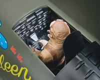 Name: topa0955-cockpit-lg.jpg Views: 121 Size: 69.7 KB Description: