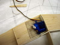 Name: 100_2259.jpg