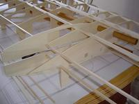 Name: wing test fit 005 with naccell #4.jpg Views: 920 Size: 66.0 KB Description: