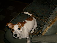 Name: S7300043.jpg