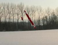 Name: AFPD Cobra Calypso Fly by.jpg