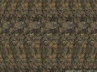 Name: vortex.jpg Views: 235 Size: 69.9 KB Description: