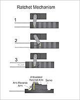 Name: ratchet mechanism.jpg Views: 139 Size: 52.3 KB Description: