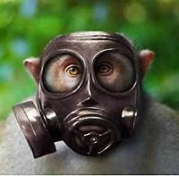 Name: Gass Monkey Vic.jpg Views: 54 Size: 18.0 KB Description: Gass Monkey Vic!