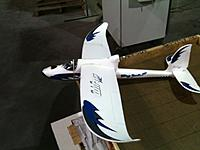 Name: Wing Surfer.jpg