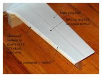 Name: 9 wing.jpg