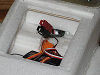 Name: OSE 026.jpg