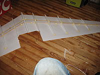 Name: IMG_0090.jpg