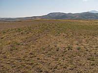 Name: P8166694.jpg Views: 97 Size: 136.5 KB Description: Main Bowl Looking West