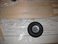 Name: IMG_1914.jpg