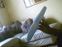 Name: Raptor Fuse Plug..0003.jpg Views: 58 Size: 11.4 KB Description: Smooth