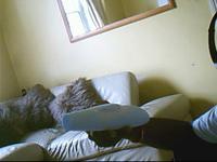Name: Raptor Fuse Plug..0005.jpg Views: 60 Size: 10.5 KB Description: Sleek looking