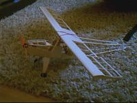 Name: West Wigs Topaz Rc Conv0002.jpg