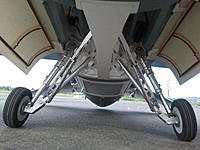 Name: Freewing F-16 Prototype Main Struts.jpg