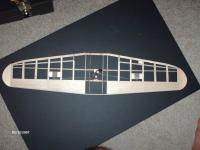 Name: HPIM1486.jpg Views: 739 Size: 80.2 KB Description: The wing with partial sheeting