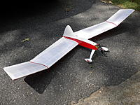 Name: WING 005.jpg