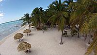 Name: Dominican 2.jpg Views: 167 Size: 172.3 KB Description: