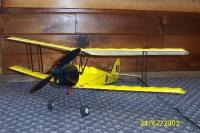 Name: tiger moth1.jpg