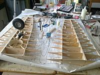 Name: Dec 2010-Feb2011 056 (2).jpg