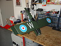 Name: DSC07416.jpg
