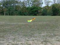 Name: CIMG6859.jpg Views: 258 Size: 65.8 KB Description: Coming in for landing