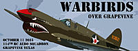 Name: p40-warbird4.jpg