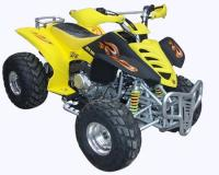 Name: BT-2503.jpg