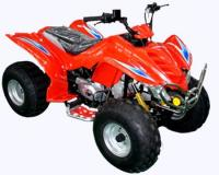 Name: BT-1504.jpg