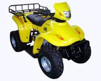Name: BT-1251.jpg