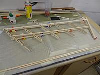 Name: DSC00916.jpg