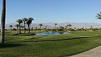 Name: 2014-04-12 17.54.48.jpg