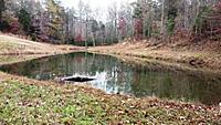 Name: pond2small.jpg Views: 108 Size: 91.3 KB Description: