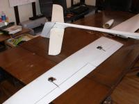 Name: 25Underside.jpg Views: 161 Size: 48.9 KB Description: Underside of the wing and tail.