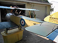 Name: sopwith beards more 007.jpg